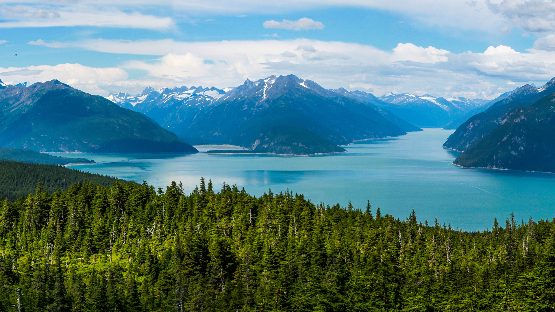 Your Alaska Travel Advisor Peggy Honore Your Travel And Cruise Planner